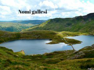 Nomi gallesi 2